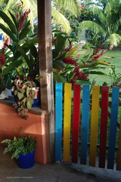 Belizean Backyard