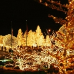 Christmas in the South 2