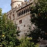 Castle of Trent