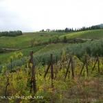Cortona, Italy hills
