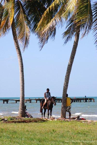 Shores of Dangriga, Belize