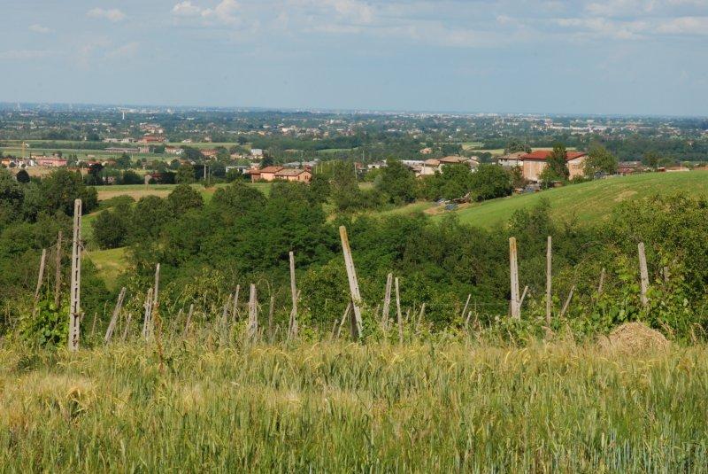 Looking toward Parma, Italy