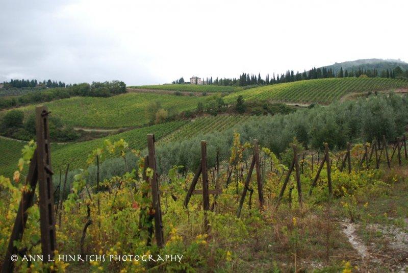 Cortona Hills, Italy