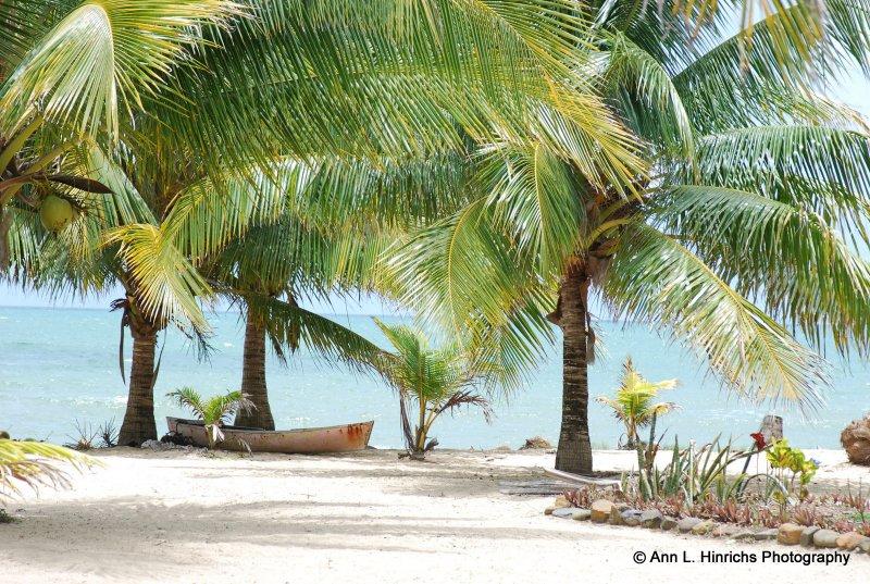Dory Boat Seashore
