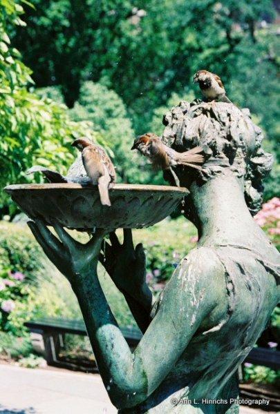 Central Park  Beauty 4