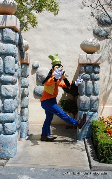 Goofy, Disneyland