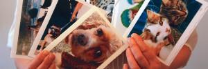 Ann's Photocards for Sale!